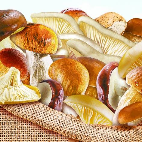 Смесь лесных грибов быстрозамороженная