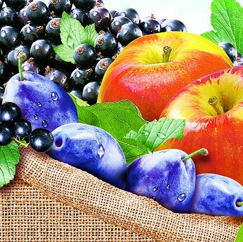 Смесь фруктовая